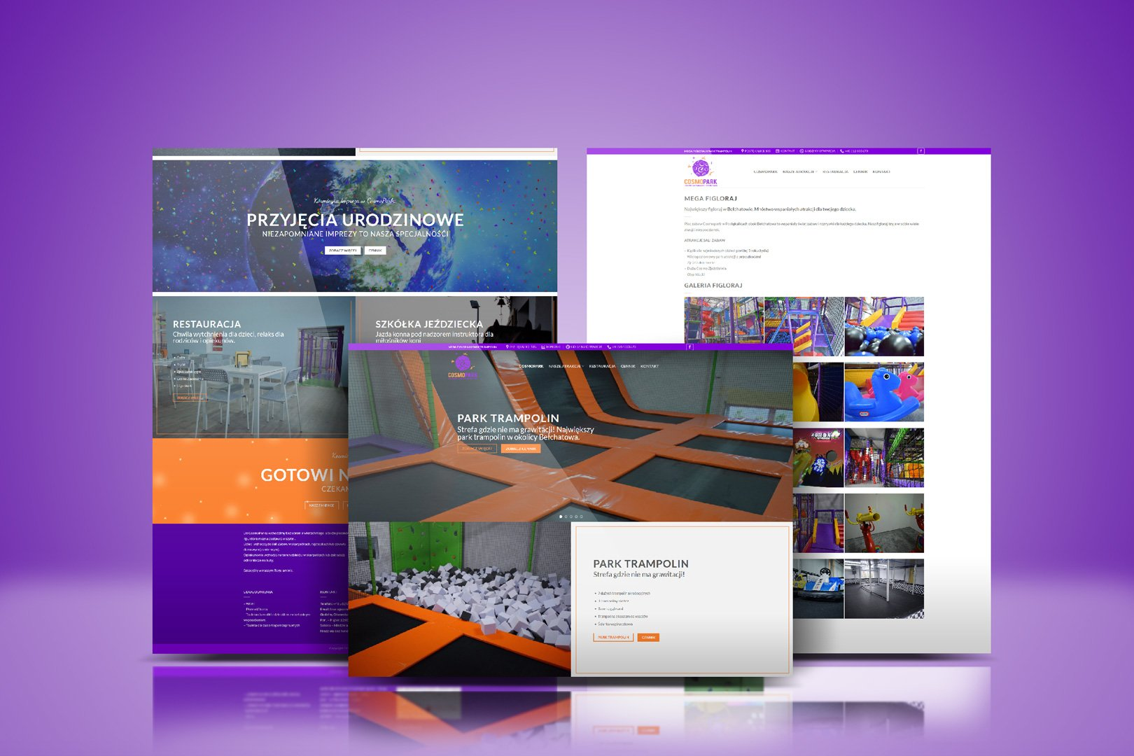 Strona www dla CosmoPark